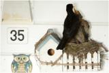 de 4 jonge merels:  ze * staan * op uitvliegen