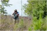 struinen over de Mechelse Heide