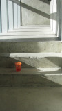 orange sippy cup