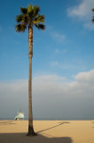 Southern California Scenes