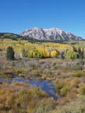 Fall Colours on Kebler Pass