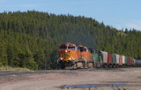 BNSF Freight Train on Marias Pass