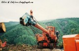 Berger C19 at Herb Olstedt Logging (1)