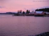 Cannery Sunrise
