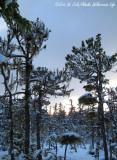Snowy Sunset