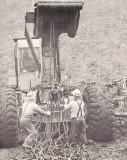 K. Bloom Logging