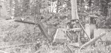 Gildersleeve Log 'Yarder Side #3'