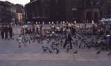 Krakow1981-Scan 7.jpg