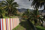 Funchal21.jpg