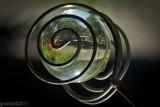 Jardin dans un boule de verre_Garden in a glass ball