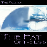 The Prodigy: The Fat of the Land