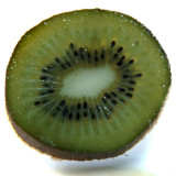February  # 11: Kiwi Delight
