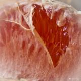 February 21: Grapefruit Heart