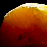 February 24 : Orange Light