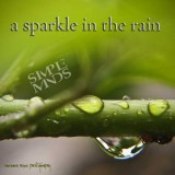 Simple Minds - a Sparkle in the Rain