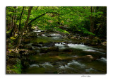 Greenbriar Cascades