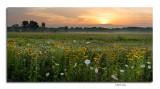 Sunrise, Prairie Oaks Metro Park