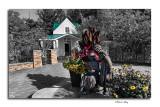 Innis Sisters Garden