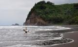 Hawaii-2011-18.jpg