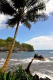 Hawaii-2011-42.jpg