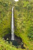 Hawaii-2011-49.jpg