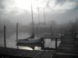 marina cove fog 042.jpg