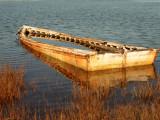 Dscn75040001marinia cove old sunken skiff 3.JPG
