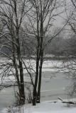 winter2007