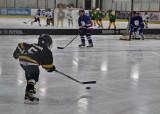 AJ Hockey
