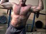 hairy bear muscle flexing.jpg