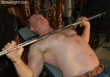 bench pressing muscle bear.jpg