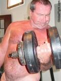 sweaty bear gym workout.jpg