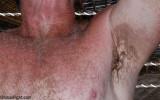 armpits gray chesthair grey.jpg