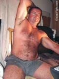shorts gym gray bear.jpg