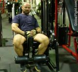 gym bear workingout legmachine.jpeg