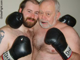 60years older boxing bear.jpeg