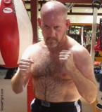 sweaty hairy boxing daddy bear sweating workout.jpg