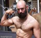 big thick beareded muscleman working out gym training hard.jpg