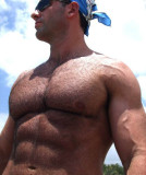 muscleman trimmed chest hairy pecs swimmer.jpg