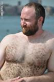 very handsome gay bear cubs free gallery pics photos.jpg