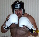 barrelchest boxing bears home videos webcams shows.jpg