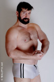musclebear hairy daddy flexing furry forearms pics.jpg
