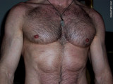 big hairy pecs fuzzy daddies furry jock chest pics.jpg