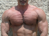 thick veiny arms biceps chest hairy pecs pics.jpg