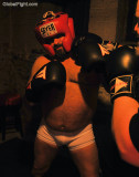 boxing bears getting punched face punching big bulges.jpg