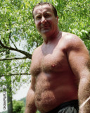 very hairy belly stomach gut punching pro wrestler daddybears.jpg