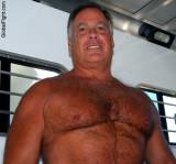 very massive hairy big chest stomach grandaddy.jpg