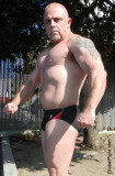 bald muscle biker trimmed chesthair tattoos speedos.jpg