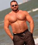 musclebear walking beach hairychest.jpg