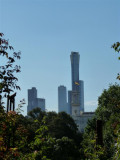 Tall towers from Royal Botanic Gardens, Melbourne